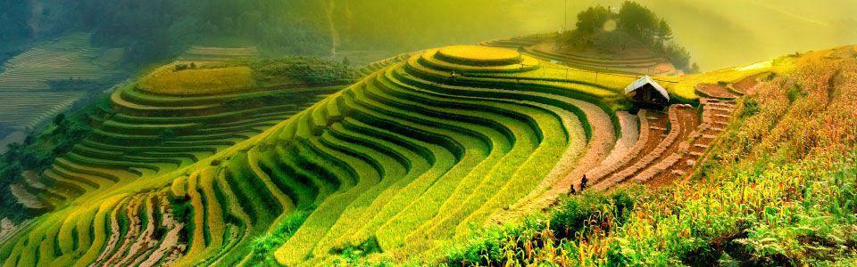 ทัวร์เวียดนาม สายการบินไทย - Mushroom Travel