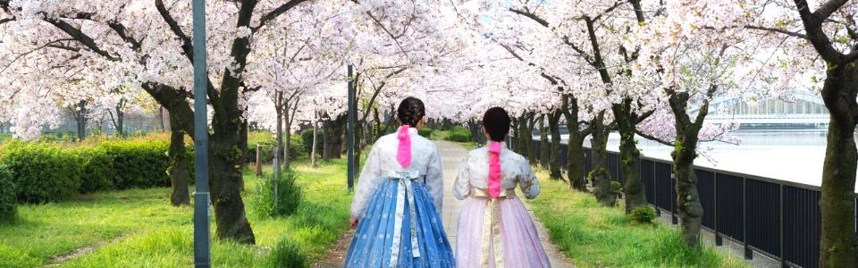 ทัวร์เกาหลี เดือนพฤศจิกายน
