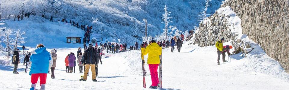 ทัวร์เกาหลี เล่นสกี เที่ยวคุ้ม ราคาโดนใจ Update ที่นั่งทุกวัน