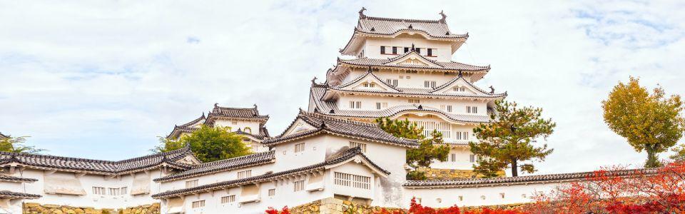 ทัวร์ญี่ปุ่น โอซาก้า ยอดขายอันดับ 1 - Mushroom Travel